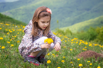 Girl and dandelions / Lovely little girl playing in the spring field full of dandelions