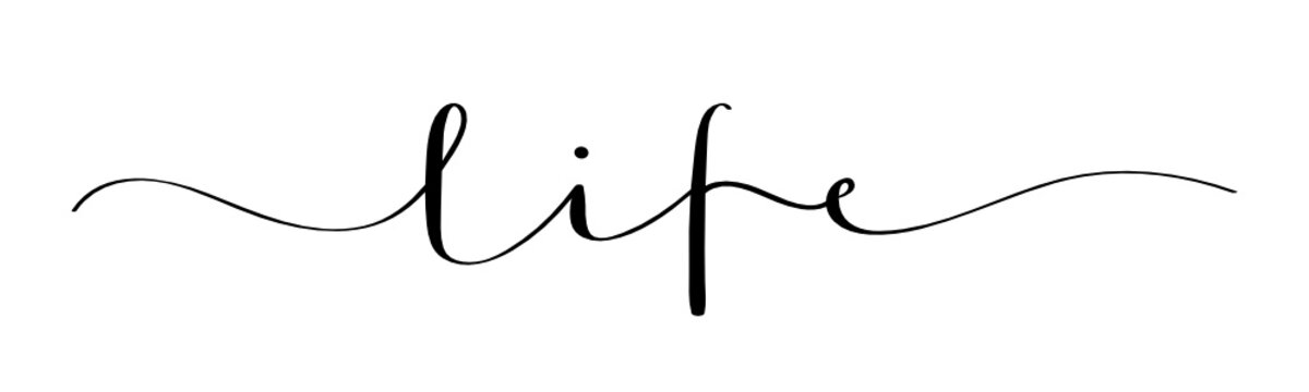 LIFE vector brush calligraphy banner