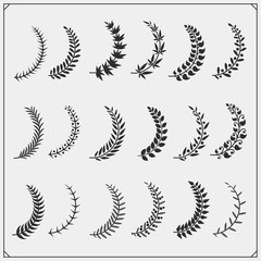 Tree branches with leaves collection. Vector black and white illustration.