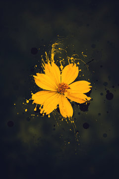 yellow flower image with abstract paint splashes