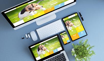 top view blue devices pet website