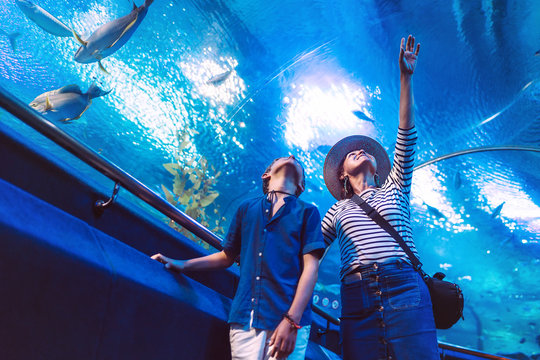 Son with his Mother watching underwater sea inhabitants in huge aquarium tunnel, showing an interesting to each other