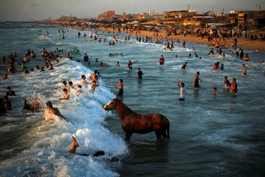 Palestinian man washes his horse in the waters of the Mediterranean Sea as people swim on a hot day in the northern Gaza Strip