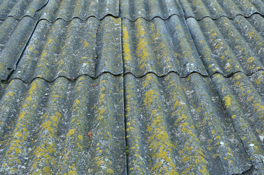 Roof of a country house, covered with gray slate, close-up. Old roof covered with slate. Green moss grows between slate waves. Texture of old roof, slate background