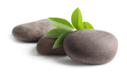 Spa stones with green branch isolated on white Wall mural