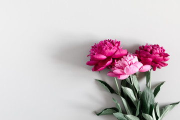 Minimal flowers composition. Pink peonies flowers on gray background. Flat lay, top view, copy space Fototapete