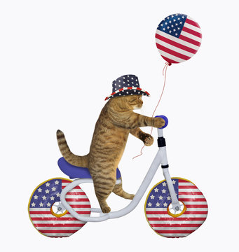 The cat patriot in an american hat with the us balloon is riding the bicycle. The wheels look like big donuts. White background. Isolated.