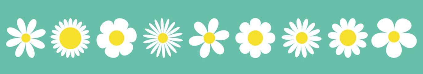 Camomile set line. White daisy chamomile icon. Cute round flower plant collection. Love card symbol. Growing concept. Isolated. Green background. Flat design. Wall mural