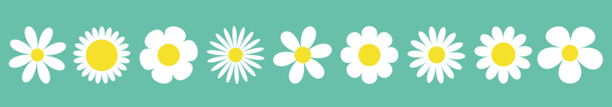 Camomile set line. White daisy chamomile icon. Cute round flower plant collection. Love card symbol. Growing concept. Isolated. Green background. Flat design.