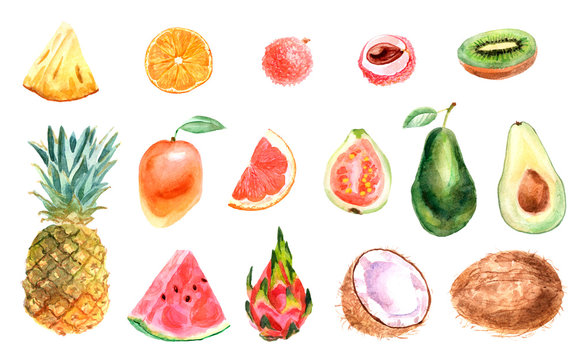 Watercolor tropical set of fruits on a white background