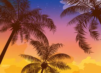 夕暮れ時の空とヤシの木のイメージイラスト