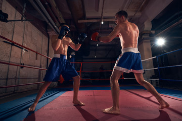 Two athletic men fighters exercising boxing in the ring at the health club