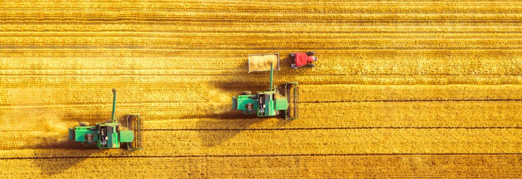 Harvester machine working in field