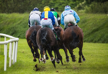 Jockeys and race horses racing down the track in the rain, view from behind