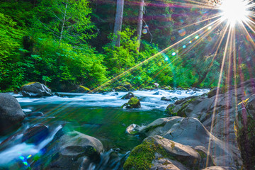 Beautiful Sunrise Hike to Sol Duc Falls in Hoh Rainforest in Olympic National Park, Washington