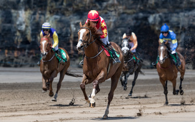 Close up on lead race horse and jockey galloping towards the finish line, race horse action on the beach