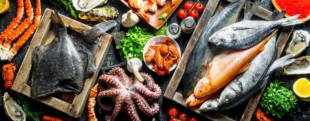Various fish, octopus, shrimp and crayfish with herbs.