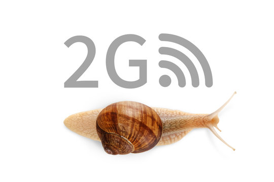 Mobile 2G network technology cellular networks concept. Internet High speed mobile broadband. Wireless cellular Signaling data. Snail, isolated white