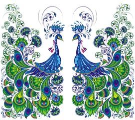 Peacock drawing fantasy. Beautiful vector Peacock