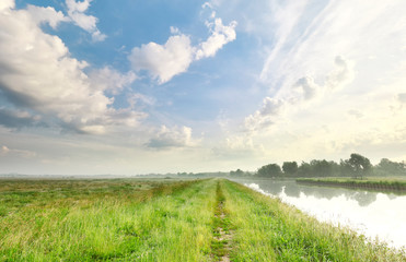 Wall Mural - green grass meadow and beautiful sky