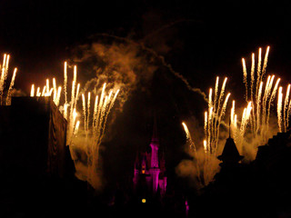 magic kingdom castle night time projection and fireworks show, disneyland park