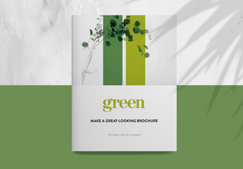 Green and White Brochure