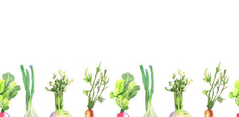 Vegetables border