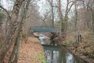Creek flowing through Leipzig Zoo.