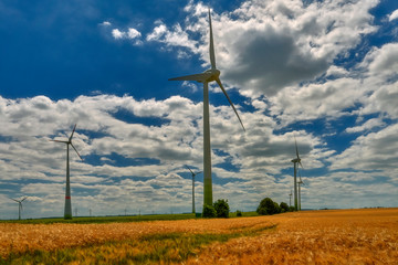 Cultivated fields with matured cereals, and on them windmills producing green energy - Germany, Maklemburg