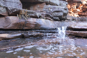 Fresh water in Alligator Gorge at Mount Remarkable National Park South Australia Wall mural