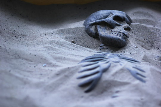 Closeup portrait of excavated skeleton in sand. Archeological dig or police investigation concept
