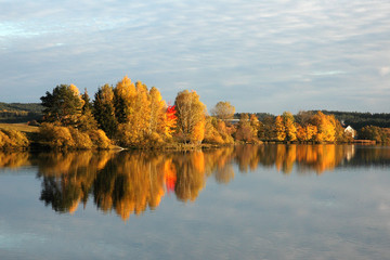 Autumn forest, lake reflection landscape.