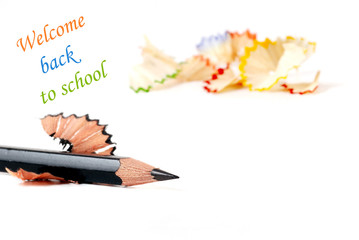 Back to school concept  on white background with copy space.
