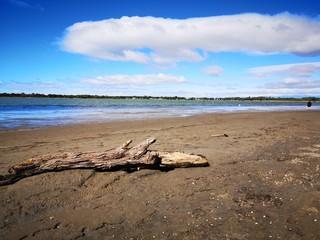 marche à pied autour du lac du ponant, grande motte, hérault