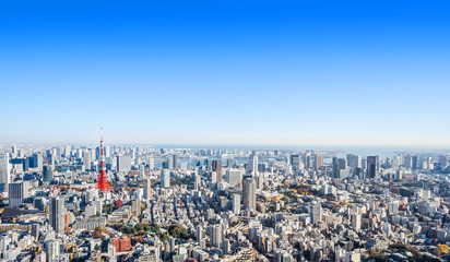 Wall Mural - modern city skyline aerial view in Tokyo, Japan