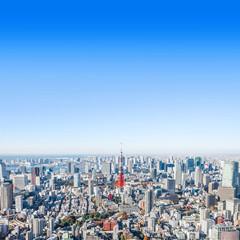 Wall Mural - modern city skyline aerial view in Tokyo, Japan
