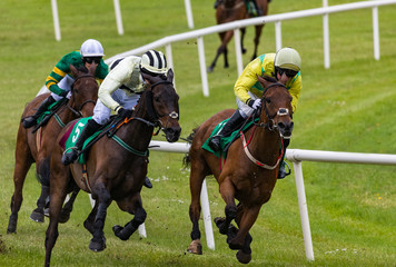 Jockeys and race horses batting for position on the final furlongs of the race