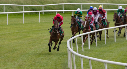 Race horse and jockey taking the lead in a race