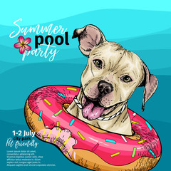 Vector portrait of pit bull terrier dog swimming in water. Donut float. Summer pool paty illustration. Sea, ocean, beach. Hand drawn pet portait. Poster, t-shirt print, holiday, postcard, summertime.