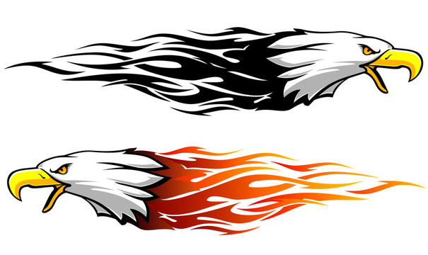 Bald Eagle Abstract Flame Variation