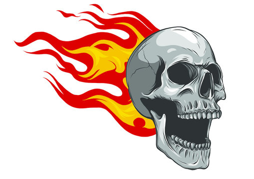 Skull on Fire with Flames Illustration in white background
