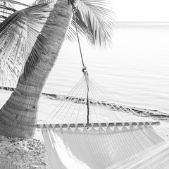 Peaceful Vacation Hammock Black and White