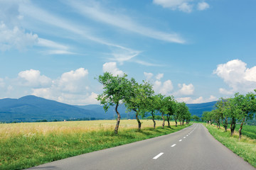 asphalt road through fields in to the mountains. beautiful summer countryside scenery of slovakia. trees along the way. vihorlat range in the distance. fleacy clouds on the blue sky. motion blur