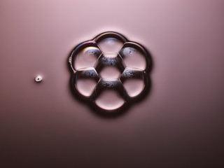Bubbles forming flower shape on pink shadowy surface