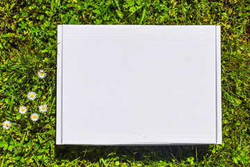 Styled stock photograpjy, mock-up digital file. Blank square for art work with green grass and white flowers background. Free white copy space.