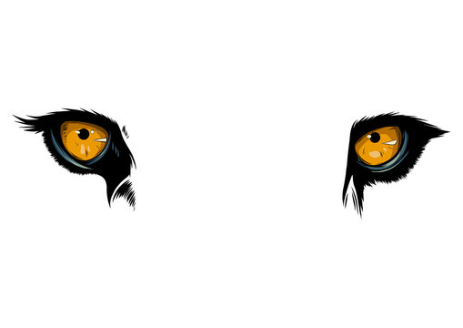 Big eyes. Yellow eyes of a lion close up. vector