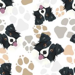 Muster Hundepfoten Border Collie