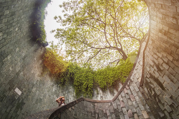 Fotobehang - traveling at Fort Canning Park in Singapore