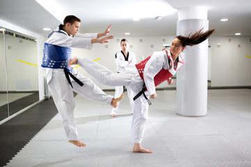 Two martial art fighters having a taekwondo combat