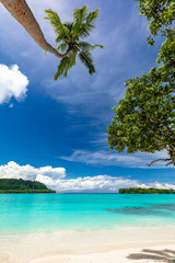 Port Orly sandy beach with palm trees, Espiritu Santo Island, Vanuatu.